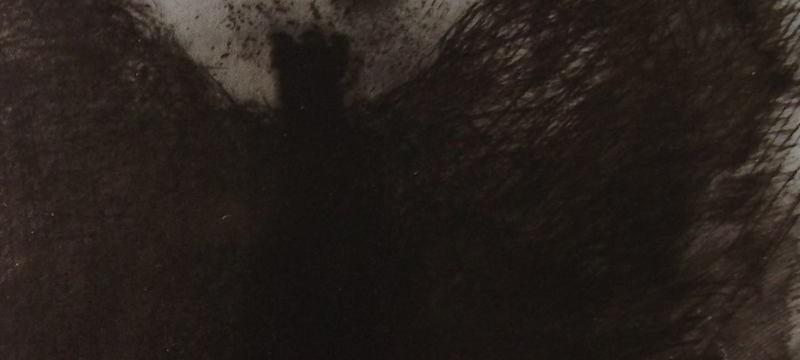 Ce détail d'un dessin de Victor Hugo représente l'ombre d'un ange qui apparaît sous la lune, les ailes déployées.