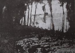 Détail d'un dessin de Victor Hugo : D'une clairière dans les sous-bois, une barque à voile s'éloigne dans le crépuscule. En bas à doite, la signature : V. HUGO.