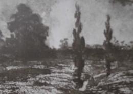 Ce détail d'un dessin de Victor Hugo représente deux peupliers qui se dressent à l'orée d'un bois ; ils évoquent, dans ce dessin de Victor Hugo, son poème Demain dès l'aube.