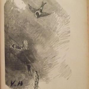 Dessin en noir et blanc qui représente un oiseau apportant à manger à ses petits dans leur nid. La signature V.H en bas à gauche.