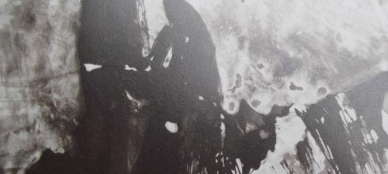 Deux formes sombres dressées devant des falaises, telles les deux filles de Victor Hugo dans sa mémoire.