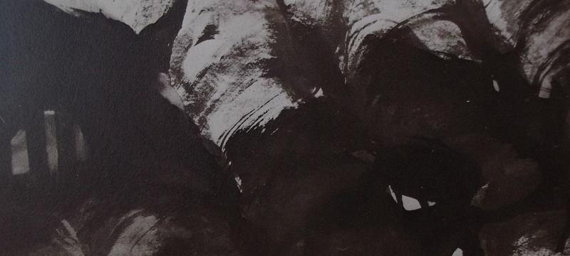 Ce détail d'un dessin de Victor Hugo représente les organes de la bête immonde, sous forme de taches sombres et de colonnes couchées comme des moraines. Il y a une sorte de soupirail avec deux barreaux sur la gauche.