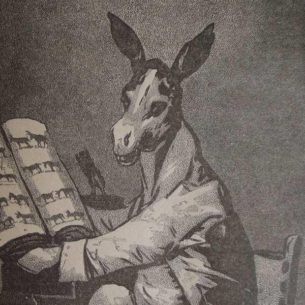Gravure en noir et blanc qui représente un âne, avec ses grandes oreilles, assis devant un livre ouvert, et tourné vers le lecteur.