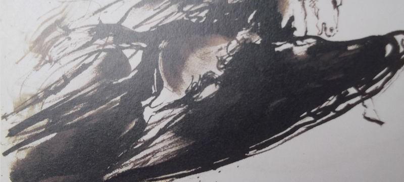 Ce détail d'un dessin de Victor Hugo représente un pégase en furie s'élevant vers le firmament.
