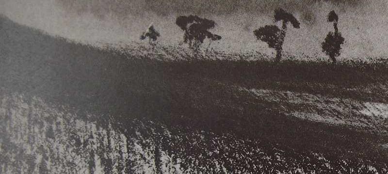 Ce détail d'un dessin de Victor Hugo représente un paysage au crépuscule du jour et de l'été : Quatre arbres se dressent sur la ligne d'horizon.
