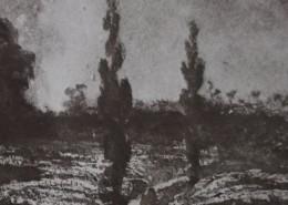 Ce détail d'un dessin de Victor Hugo représente deux peupliers qui se dressent près de la forêt rouillée par le soleil et la pluie, et incitent à la rêverie.