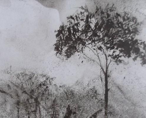 Ce détail d'un dessin de Victor Hugo représente les frondaisons d'une forêt et la silhouette d'un arbre qui se détache sur une nuit d'été lumineuse.