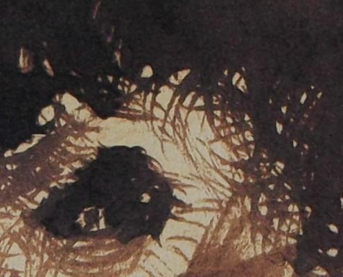 Ce détail d'un dessin de Victor Hugo représente l'œil, surmonté de cheveux broussailleux, d'un homme plongé dans la folie, par exemple Eugène, frère de Victor Hugo.