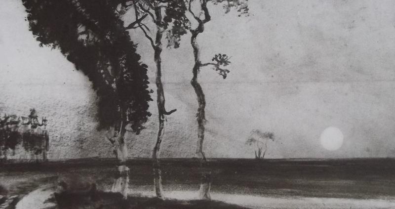 Ce détail d'un dessin de Victor Hugo représente un horizon de nature, avec trois arbres contournés par un chemin sur lequel sont projetées leurs ombres. Le disque du soleil couchant est sur l'horizon.