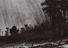 Ce détail d'un dessin de Victor Hugo représente un vallon où il a plu. L'air et les arbres frissonnent. L'ombre ouvre un gouffre obscure.