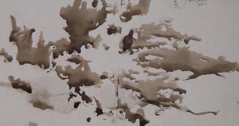 Ce détail d'un dessin de Victor Hugo, Rorschach avant la lettre, représente un visage éparpillé en deux dimensions. On voit, à l'œil, qu'il se demande ce qu'il fait là. Est-ce à Théophile Gautier ?