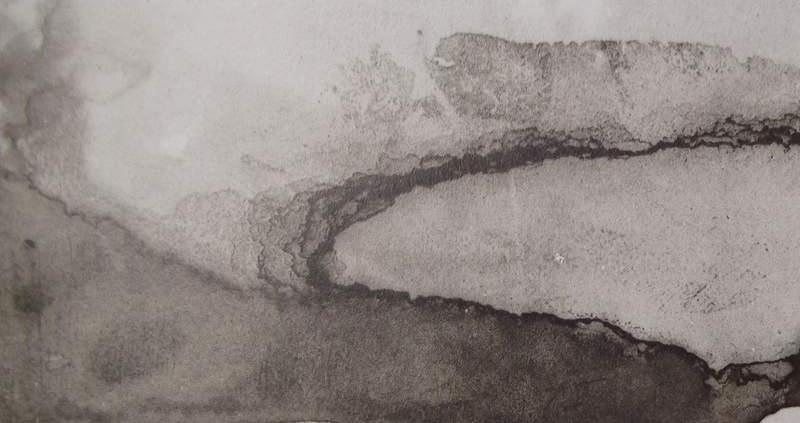 Ce détail d'un dessin de Victor Hugo est composé par des taches dont une qui coule vers le bas de la feuille... à moins que ce ne soit la banquise sur laquelle rampe un phoque hilare devant le principe de réalité.