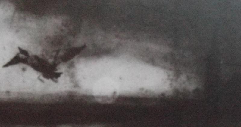 Ce détail d'un dessin de Victor Hugo représente un oiseau (un épervier ?) volant à tire d'aile dans la brume du soir, tandis que se couche le soleil. On aperçoit, à droite, l'ombre d'un clocher.