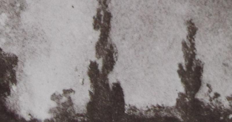 """Ce détail d'un dessin de Victor Hugo représente un grand feu au milieu des arbres, au milieu desquels se déroule le """"bleu sabbat de ces nocturnes fées""""."""