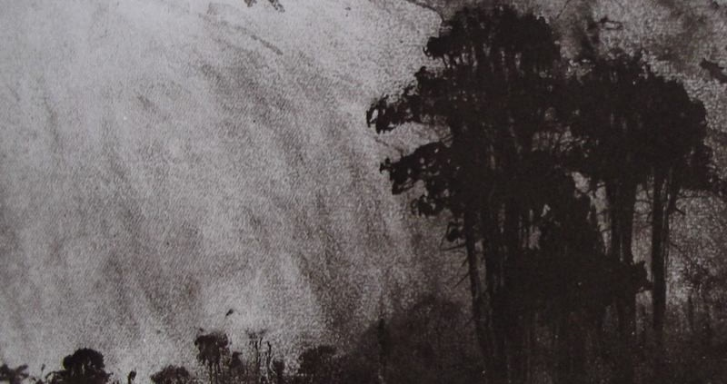 Ce détail d'un dessin de Victor Hugo représente les arbres de la forêt sous la lumière du ciel.