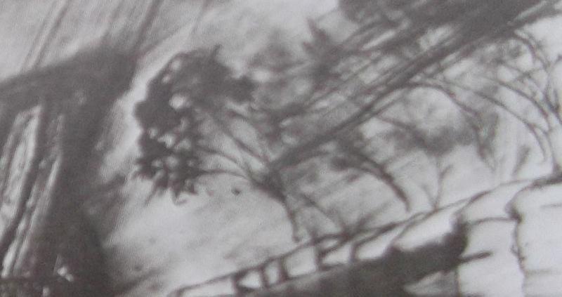 Ce détail d'un dessin de Victor Hugo représente une haie d'arbres pliés par la tourmente le long d'un chemin.