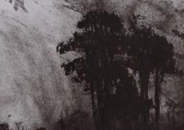 Ce détail d'un dessin de Victor Hugo représente des frondaisons sous un ciel contrasté entre douceur et tourments.