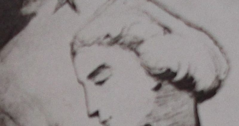 Ce détail d'un dessin de Victor Hugo représente, en gros plan, le visage de profil d'une jeune femme (Léopoldine, noyée le 4 septembre 1843, à Villequier). Au-dessus, à droite, on distingue une étoile à cinq branches.