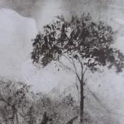 Ce détail d'un dessin de Victor Hugo représente un arbre, refuge des oiseaux.