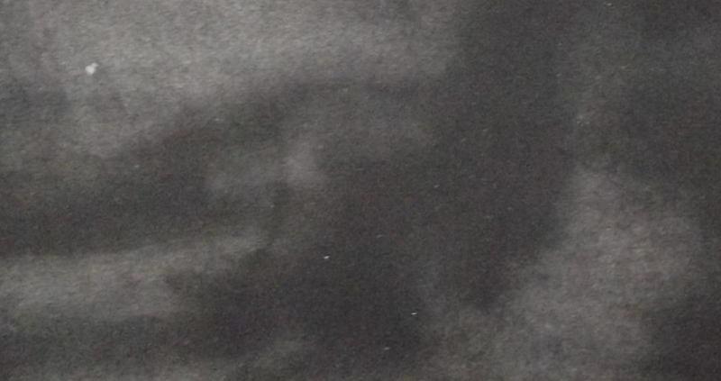 Ce détail d'un dessin de Victor Hugo représente l'ombre d'un aigle (ou d'une colombe ?) dans l'obscurité de l'univers.