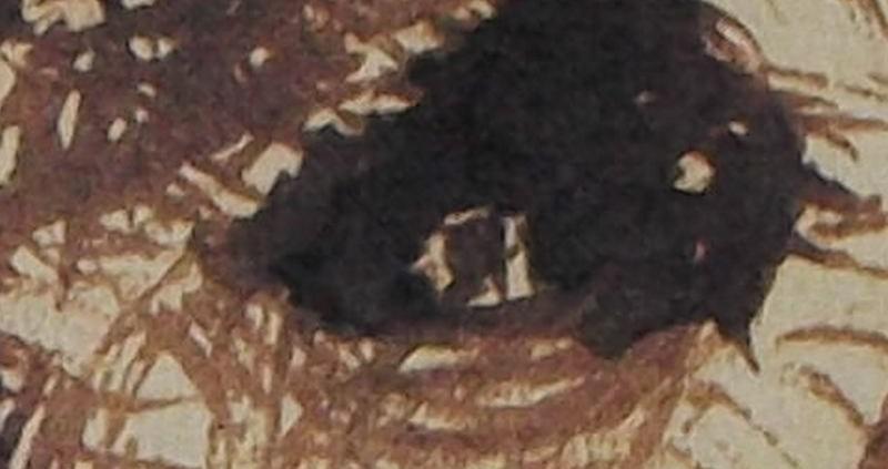 Ce détail d'un dessin de Victor Hugo représente un œil, peut-être celui d'un homme en quête d'infini.