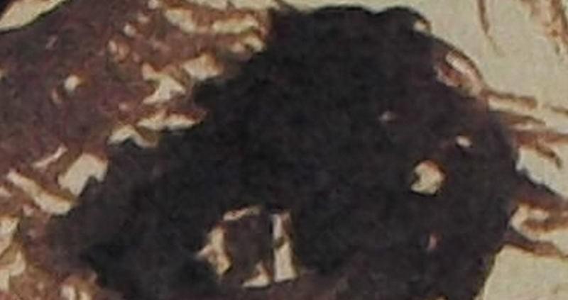 """Ce détail d'un dessin de Victor Hugo représente un œil écarquillé, peut-être celui de l'""""esprit mystérieux""""."""