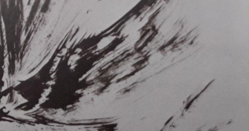 """Ce détail d'un dessin de Victor Hugo représente les battements d'aile des oiseaux envolés""""."""