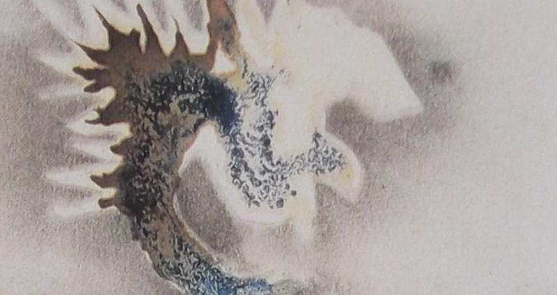 Ce détail d'un dessin de Victor Hugo représente une tête de phénix, aux reflets bleus, irradiant une lueur éblouissante (à moins que ce soit un dragon crachant de la lumière).