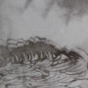"""Ce détail d'un dessin de Victor Hugo représente l'océan, """"le flot sombre"""" quand """"l'onde est en furie"""", avec une vague déferlante. Une forme étrange apparaît sur la droite."""