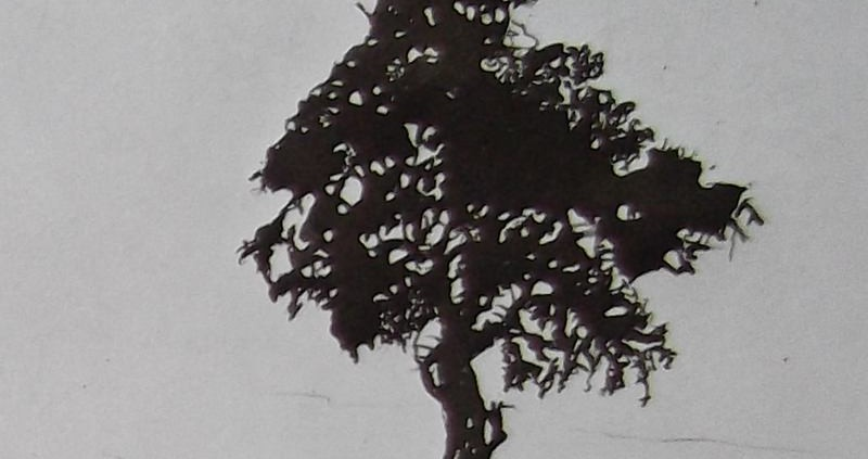 """Ce détail d'un dessin de Victor Hugo représente """"un vieux cèdre au grand feuillage sombre"""" """"tout auprès de la mer Rouge""""."""