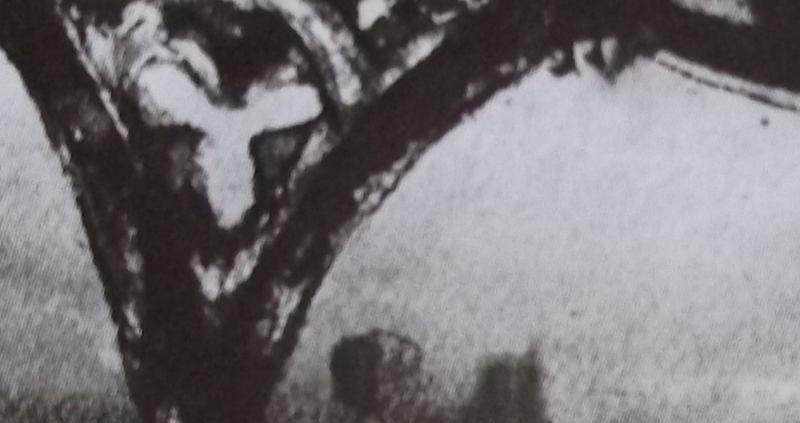 Ce détail d'un dessin de Victor Hugo représente une arcade, avec une ferronnerie représentant un trèfle à trois feuilles et, derrière, le sommet de deux tours.